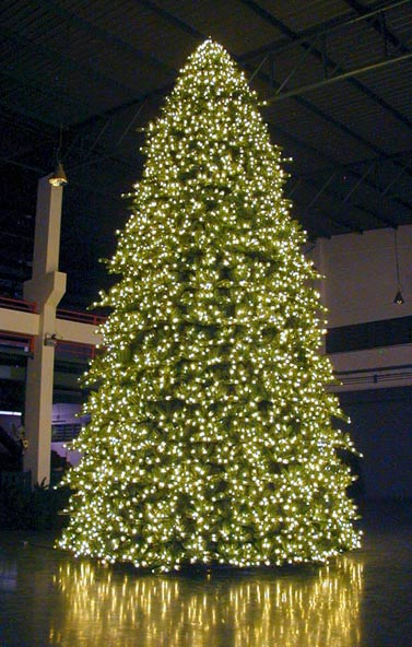 Large Foyer Indoor Christmas Tree, the